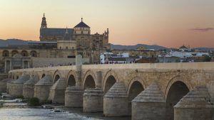 Ley de Segunda Oportunidad en Córdoba