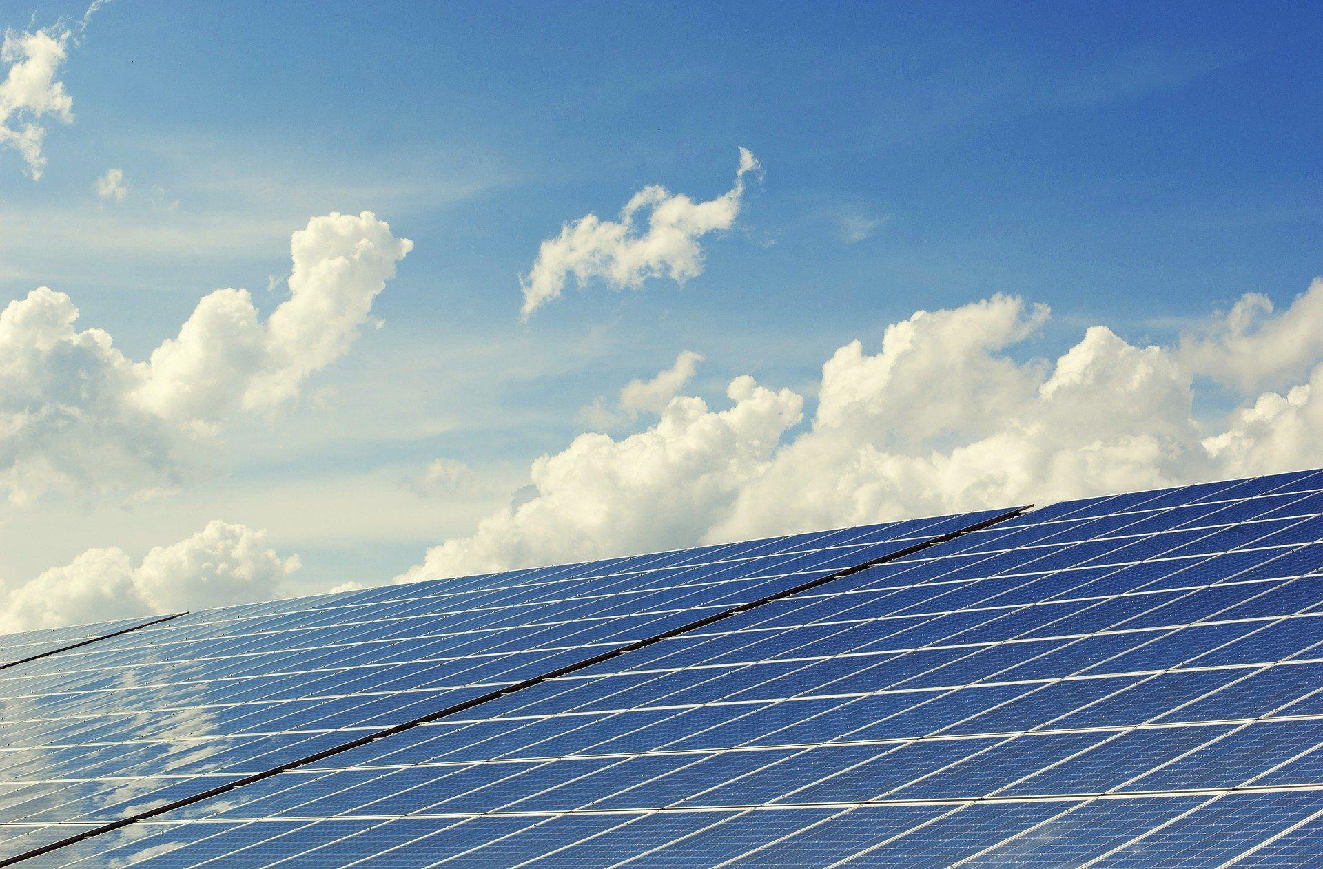 Ayudas en materia de energías renovables y biocarburantes.