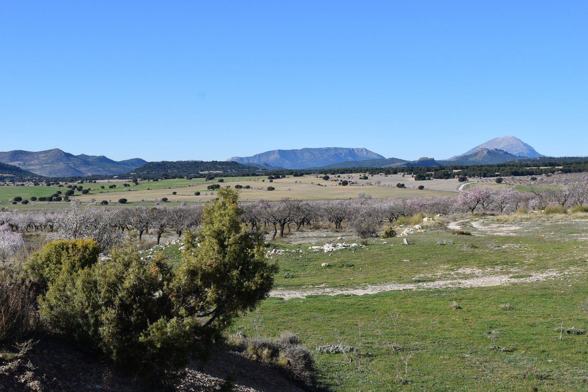 Subvenciones estatales renovación del parque nacional de maquinaria agrícola.